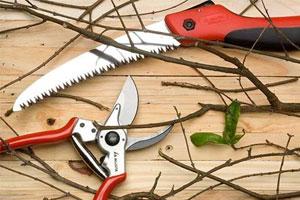 ferramentas-para-jardinagem